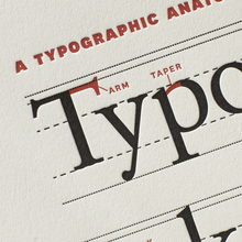 Typographic Anatomy Poster