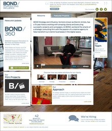 Bond Strategy and Influence Website