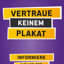 Piraten, Nationalratswahl 2013