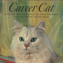 <cite>Career Cat</cite>
