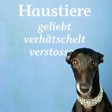 <cite>Unsere Haustiere</cite> at Naturkundemuseum St. Gallen