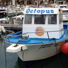 """Octopus"" boat"