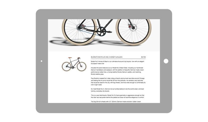 Berger.Fohr-Budnitz.Bicycles.Web-03.2.jpg