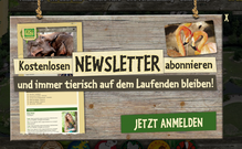 Zoo Leipzig Website