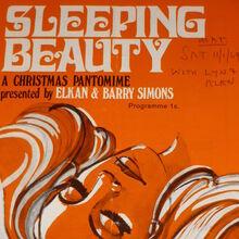 <cite>Sleeping Beauty</cite> program, ABC Peterborough pantomime production