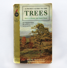 <cite>A Pocket Guide To The Trees</cite> by Rutherford Platt