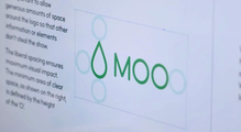MOO identity and website (2014)