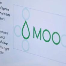 MOO identity and website (2014)