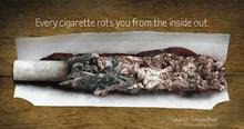 Smokefree advertising campaigns