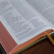 Schuyler Quentel ESV Bible
