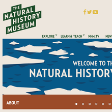 <cite>The Natural History Museum</cite> website