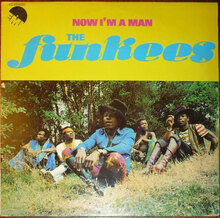 The Funkees – <cite>Now I'm a Man</cite> album art