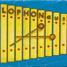 Xylophon aus Holz