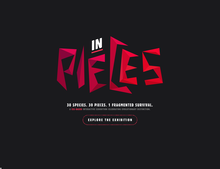 In Pieces website
