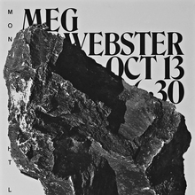 Meg Webster lecture announcement