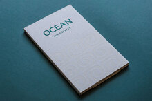 <cite>Ocean</cite> by Sue Goyette
