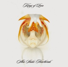 <cite>Aha Shake Heartbreak</cite> by Kings of Leon