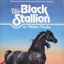 <cite>The Black Stallion</cite> by Walter Farley