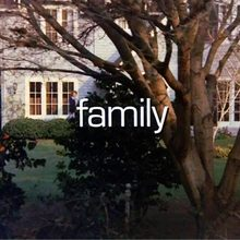 <cite>Family</cite> TV series, 1976–1980