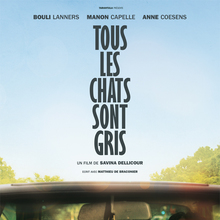 <cite>Tous les chats sont gris</cite> movie poster