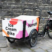 Mammoth Ice Cream