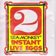 Sea-Monkey packets