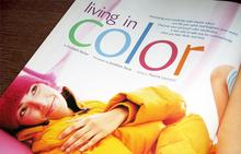 <i>Natural Health</i> Magazine, 2004 Redesign