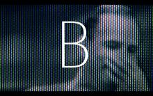 Bergman's Video