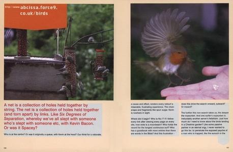 Birds_jpg_460x298_q95.jpg