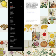 <cite>Wunderkammer</cite> website