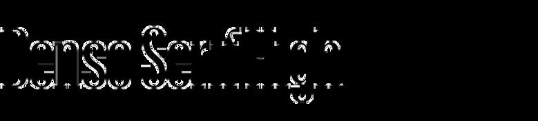 Denso Serif High