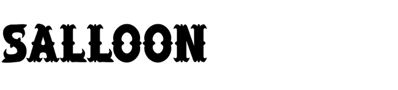 Salloon