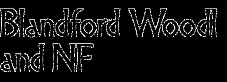 Blandford Woodland NF