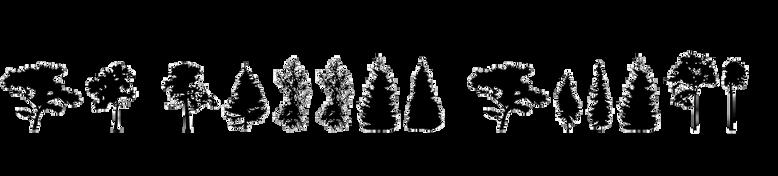 FT Hidden Forest