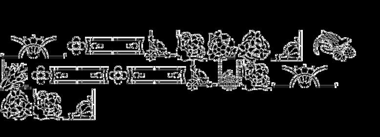 Stencil Patterns JNL