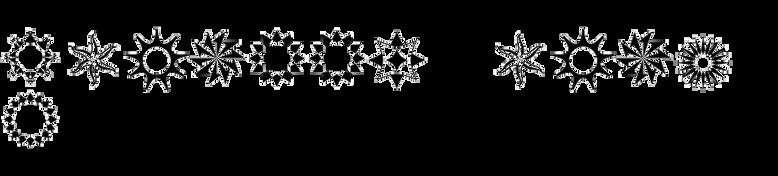 XStella Stern