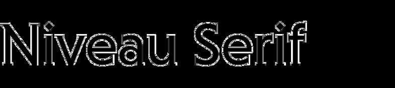 Niveau Serif