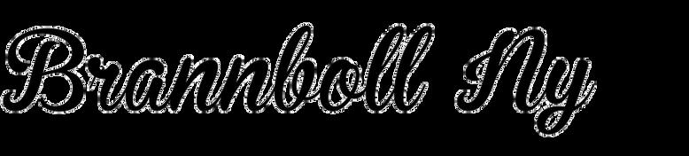 Brannboll Ny