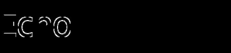 Echo (Typotheque)