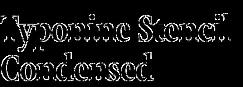 Typonine Stencil Condensed