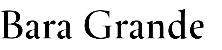 Bara Grande