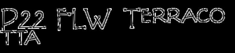 P22 FLW Terracotta