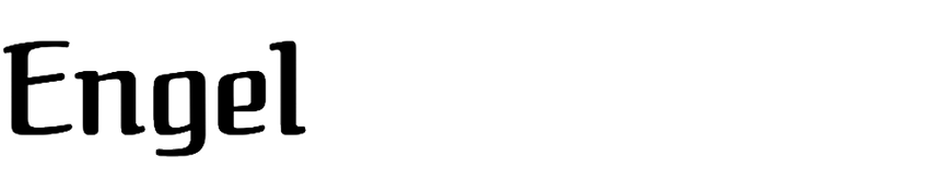 Engel (T-26)