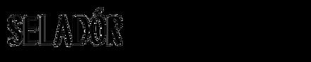 Seladór