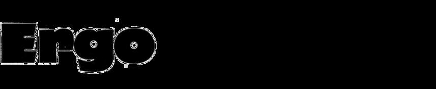 Ergo (Hollenstein)