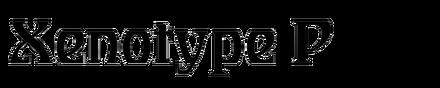 Staudel Xenotype P