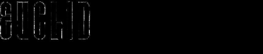 Euclid (Lustig)