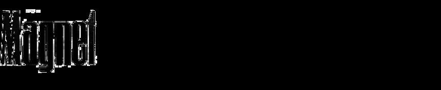Magnet (Klingspor)
