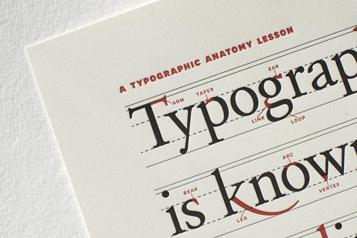 Typographic Anatomy Poster 1