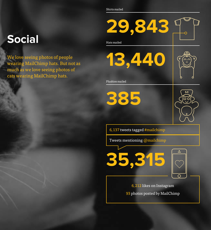MailChimp Annual Report 5